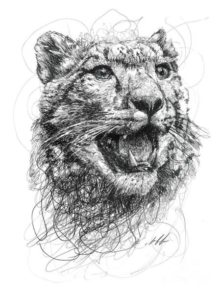 African Animal Drawing - Leopard by Michael Volpicelli