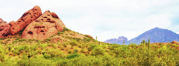 Wall Art - Photograph - Papago Park Phoenix Arizona Horizontal Banner by Susan Schmitz