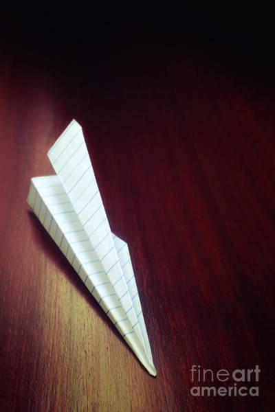 Vintage Airplane Photograph - Paper Plane Toy by Carlos Caetano