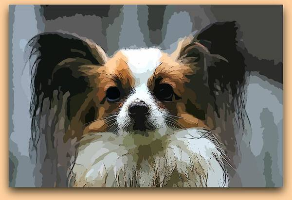 Photograph - Papillon-painted by Ericamaxine Price