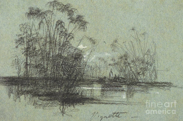 Wall Art - Pastel - Papyrus On The Anapus by Edward Lear
