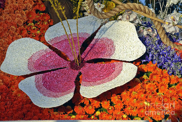 Tournament Of Roses Photograph - Parade Float Colorful Flower by David Zanzinger