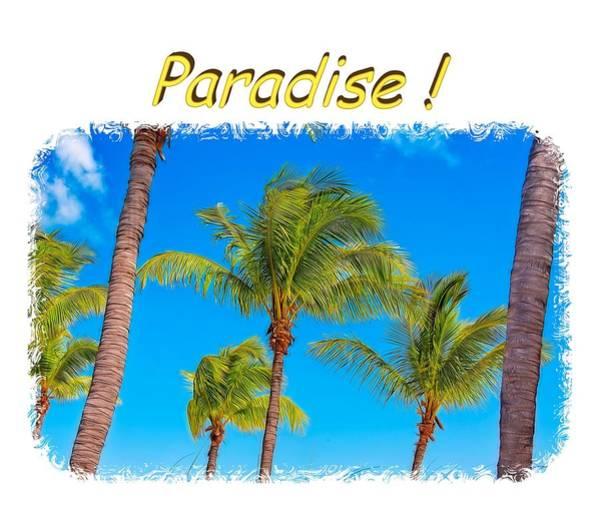Photograph - Paradise 2 by John M Bailey