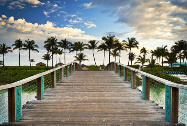 Wall Art - Photograph - Paradise Beach Tropical Palm Trees Islands Summer Vacation by Dave Allen