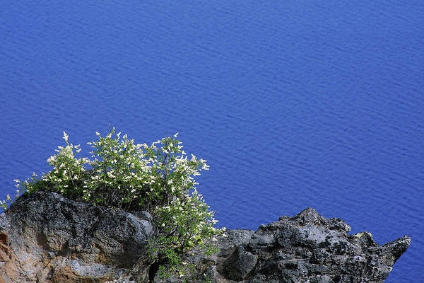 Wall Art - Photograph - Paradise For Backpackers - Crater Lake In Crater National Park - Oregon by Christine Till