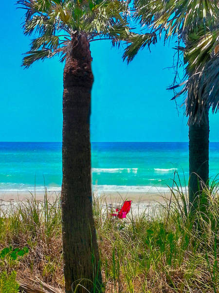 Photograph - Paradise On Anna Maria Island by Susan Molnar