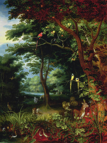 Bird Of Paradise Painting - Paradise Scene With Adam And Eve by Jan the Younger Brueghel