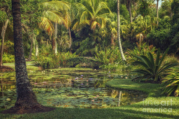 Photograph - Paradise by Tim Wemple