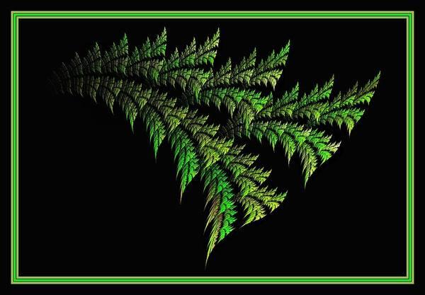 Digital Art - Parakeet Palmetto - Framed by Doug Morgan