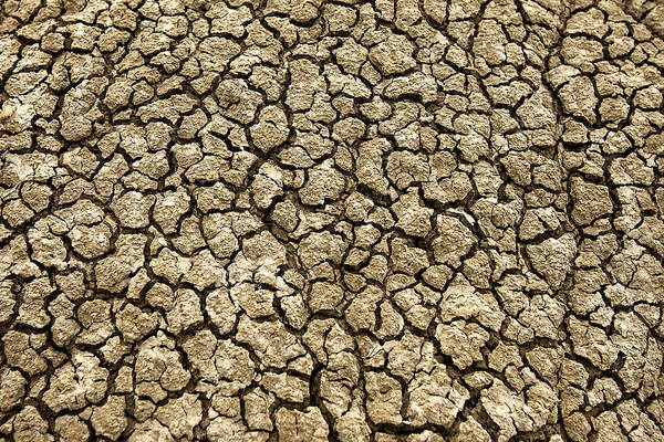 Warming Up Wall Art - Photograph - Parched Soil by Todd Klassy