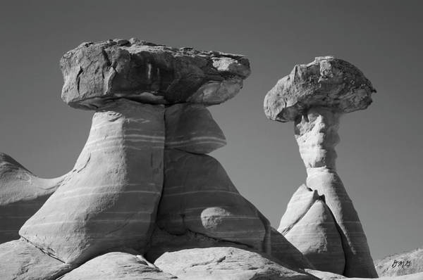 Photograph - Paria Utah Xiii Bw by David Gordon