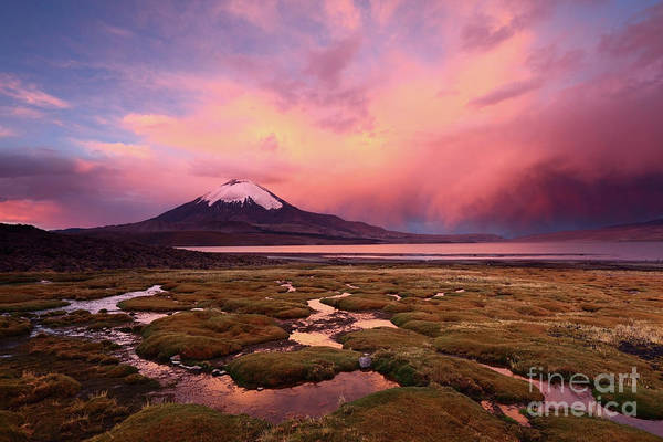 Photograph - Parinacota Volcano And Lake Chungara At Sunset by James Brunker
