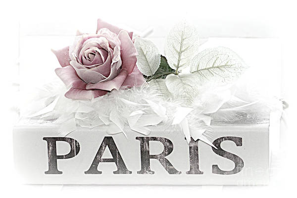 Wall Art - Photograph - Paris Dreamy Pastel Pink Roses On Paris Book - Romantic Paris Roses And Books Shabby Chic Art by Kathy Fornal