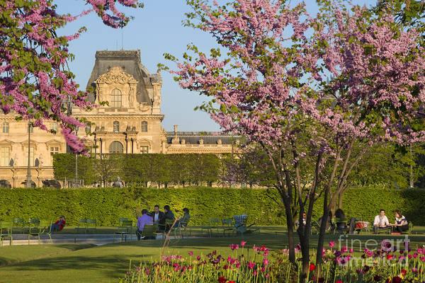 Jardin Des Tuileries Photograph - Paris Garden In Spring by Brian Jannsen