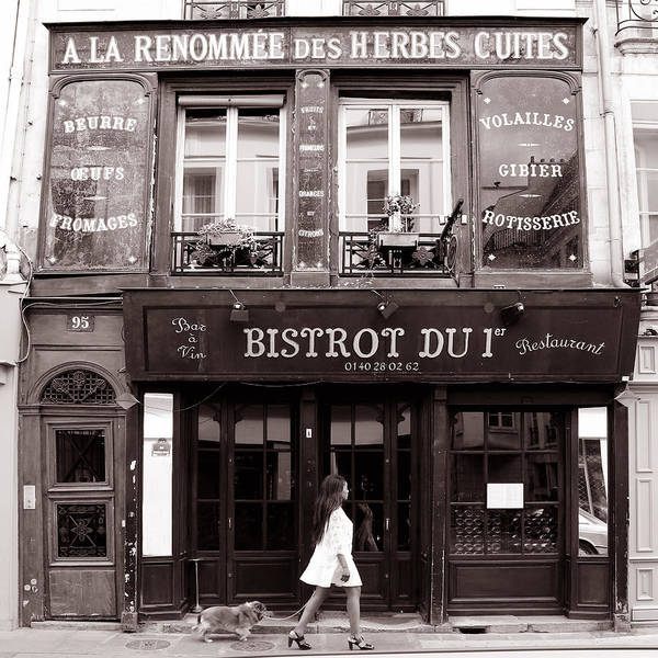 Photograph - Paris Street Life 2b by Andrew Fare