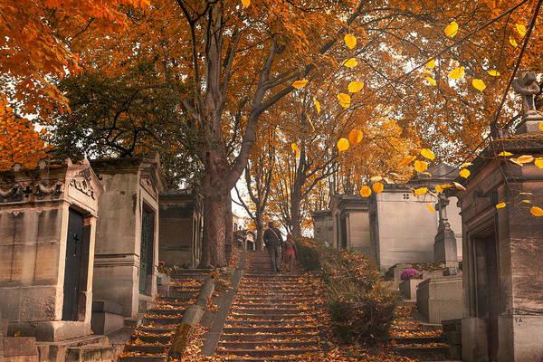 Photograph - Parisian Fall by Marji Lang