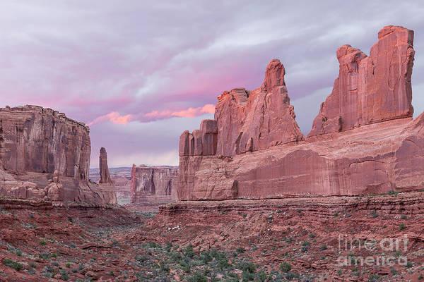 Photograph - Park Avenue Sunset by Richard Sandford