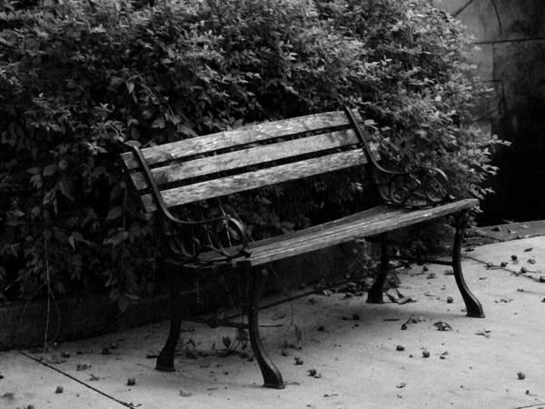 Wall Art - Photograph - Park Bench by Michael L Kimble
