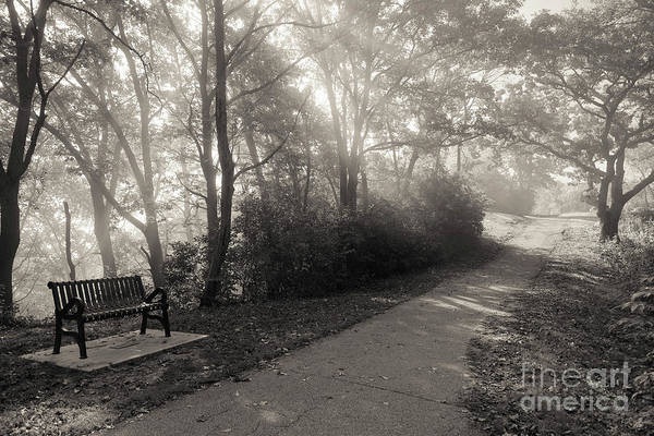 Photograph - Park Bench Path With Foggy Sunbeams Winona Minnesota by Kari Yearous