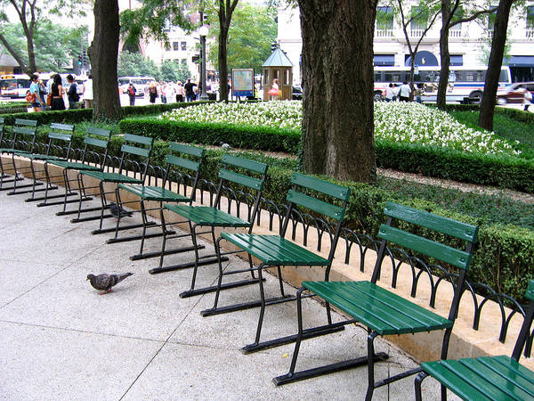 Photograph - Park Benches by Laura Kinker