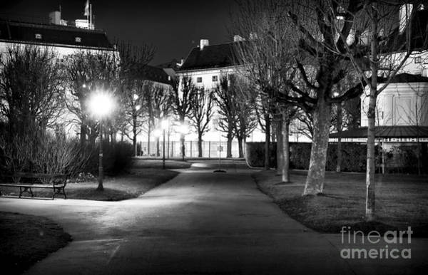 Photograph - Park Light In Vienna by John Rizzuto