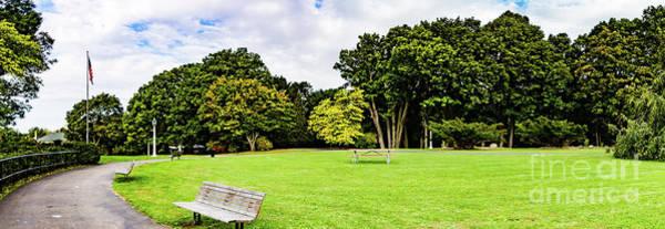 Photograph - Park Panorama by William Norton