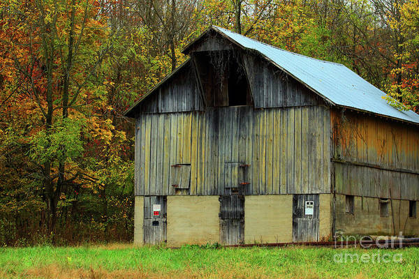 Wall Art - Photograph - Parke County 2017-11 by Alan Look