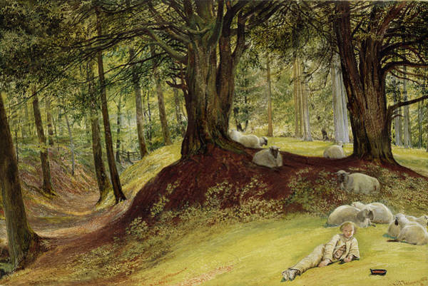 Wall Art - Painting - Parkhurst Woods by Richard Redgrave