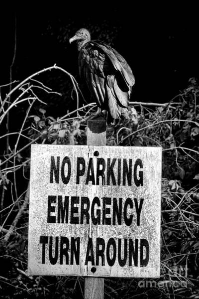 Wall Art - Photograph - Parking Enforcement by Olivier Le Queinec