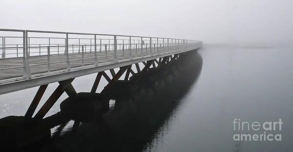 Bridge Bank Photograph - Parque Dos Nacoes by DiFigiano Photography