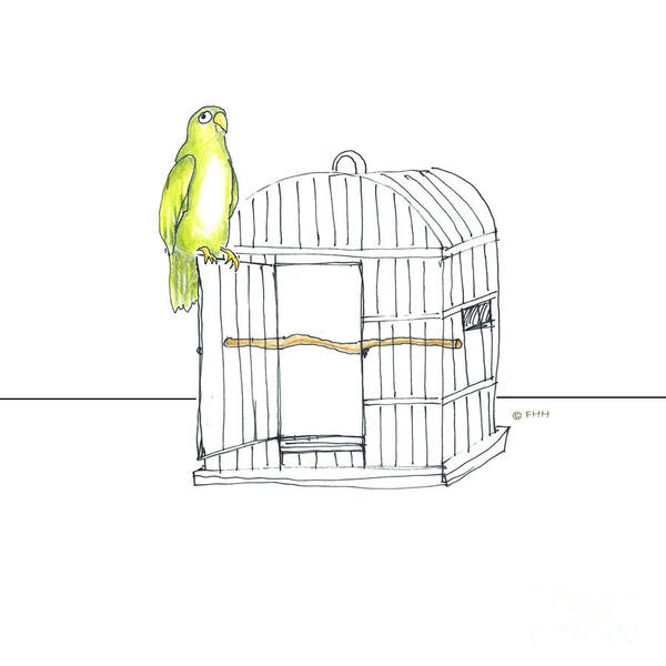 Parrot Drawing - Parrot And Cage by Fran Henig