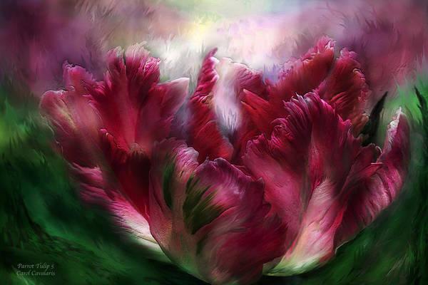 Mixed Media - Parrot Tulip 5 by Carol Cavalaris