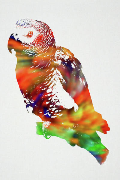 Wall Art - Mixed Media - Parrot Wild Animals Of The World Watercolor Series On White Canvas 009 by Design Turnpike