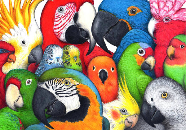 Wall Art - Painting - Parrotheads by Don McMahon
