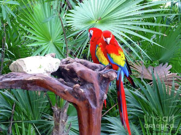 Digital Art - Parrots by Francesca Mackenney