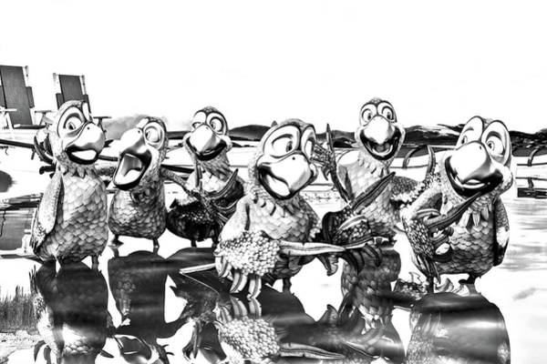 Shore Bird Digital Art - Parrots In Paradise Bw by Betsy Knapp