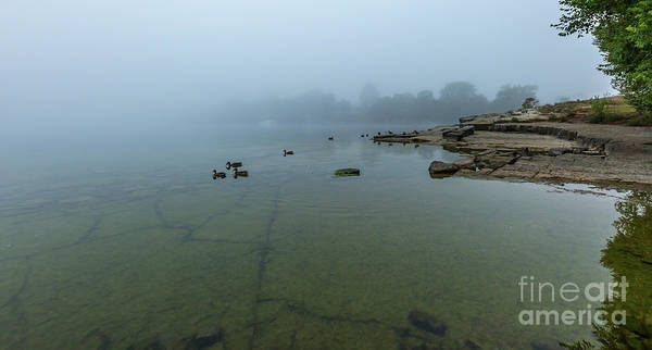 Photograph - Parrott's Bay In Fog by Roger Monahan