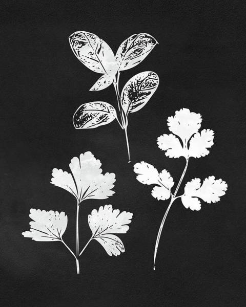 Stem Wall Art - Mixed Media - Parsley Cilantro Basil Leaves- Art By Linda Woods by Linda Woods