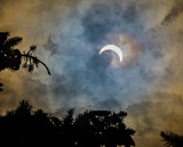 Wall Art - Photograph - Partial Eclipse 2017 by Bill Pevlor