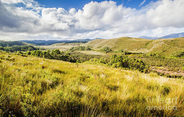 Grassland Photograph - Parting Creek Regional Reserve Tasmania by Jorgo Photography - Wall Art Gallery
