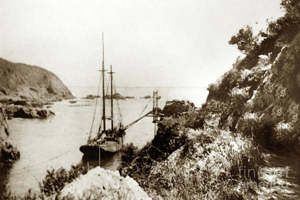 Photograph - Partington Cove On The Big Sur Coast Circa 1903 by California Views Archives Mr Pat Hathaway Archives
