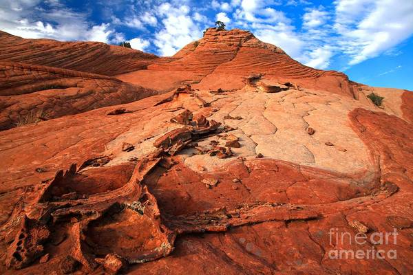 Photograph - Partly Cloudy Over Candy Cliffs by Adam Jewell
