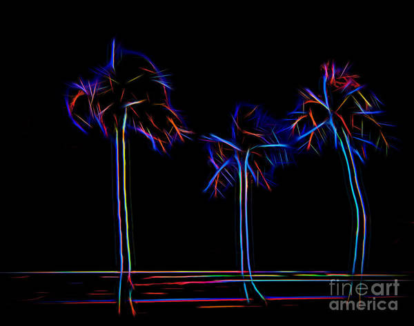 Photograph - Party Trees by Jon Burch Photography