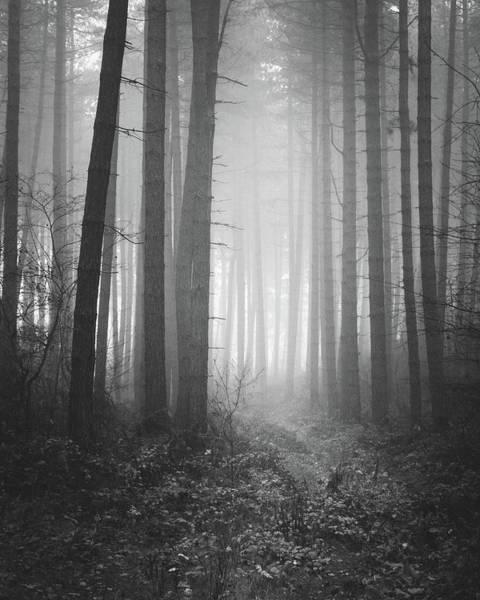 Nottinghamshire Photograph - Passage by Chris Dale