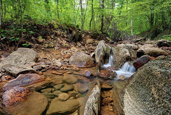 Photograph - Passage Creek Summer 2016 by Lara Ellis