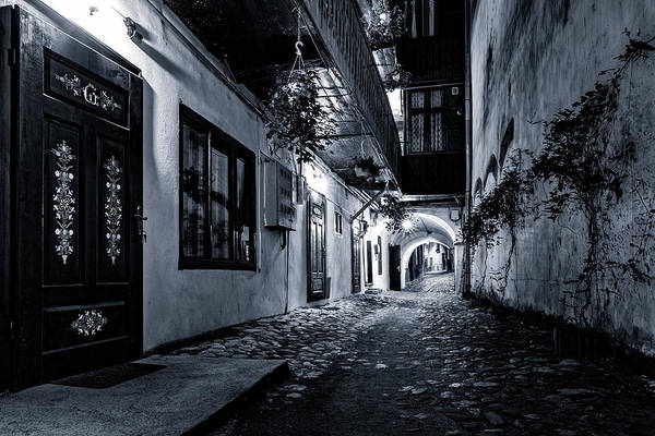 Photograph - Passage by Mihai Andritoiu
