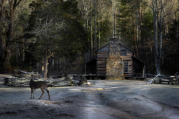 John Oliver Cabin Photograph - Passing By by Mike Eingle