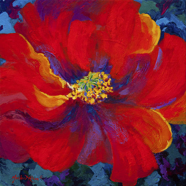 Wall Art - Painting - Passion - Red Poppy by Marion Rose