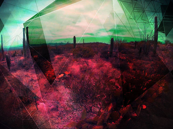 Mixed Media - Passion In The Desert by MB Dallocchio