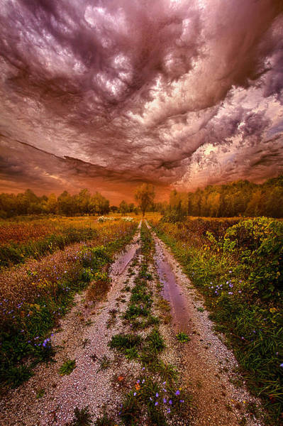 Summer Storm Photograph - Passion Within Chaos by Phil Koch